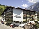 Hotel Engel  Mellau